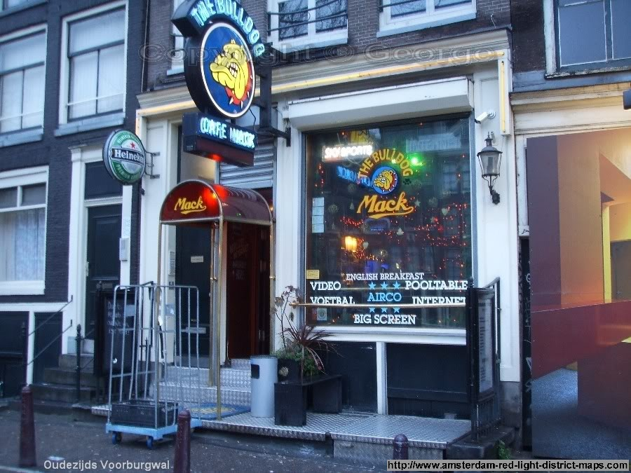 Bulldog Cafe Amsterdam